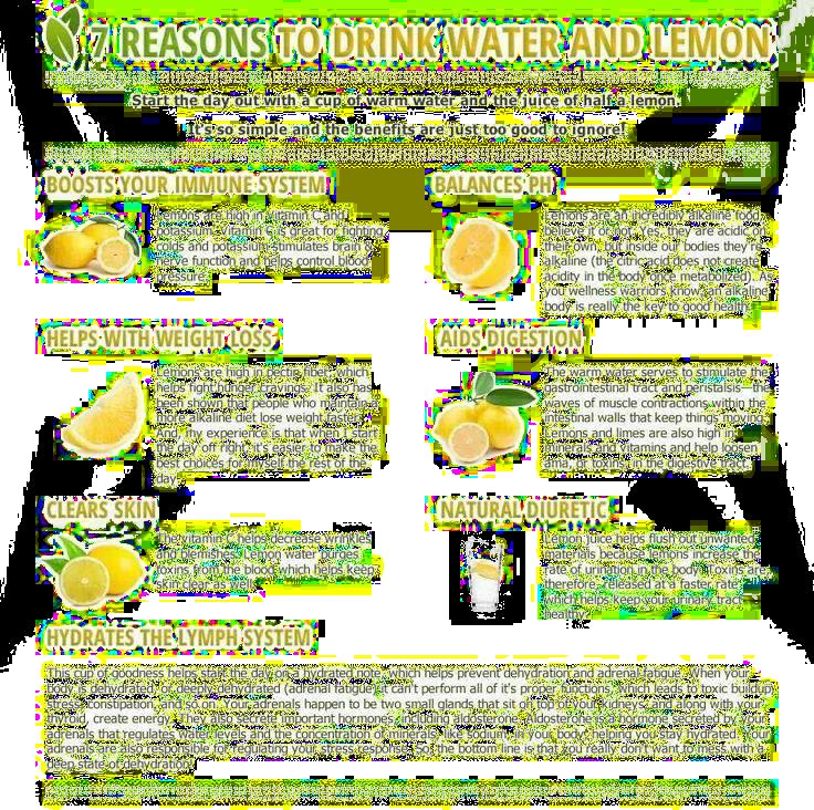 Summer Lemonade Diet Fastslim Weight Loss Plan